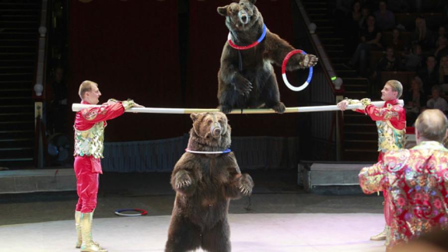 Глава Росгосцирка против отказа от номеров с дикими животными