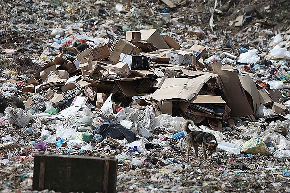 К 2020 году создадут госресурс для гражданского контроля утилизации отходов