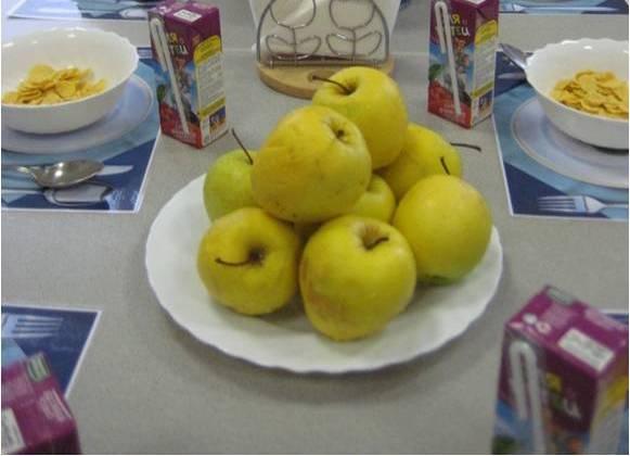 В Москве состоится круглый стол «Когда детей будут кормить по ГОСТу?»
