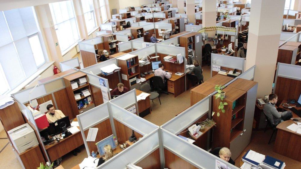 Москва, Петербург и Краснодар стали лидерами по количеству вакансий