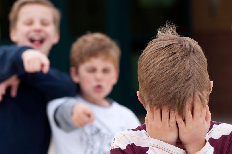 Буллинг детей в школе инициирует их побег из дома — Второв