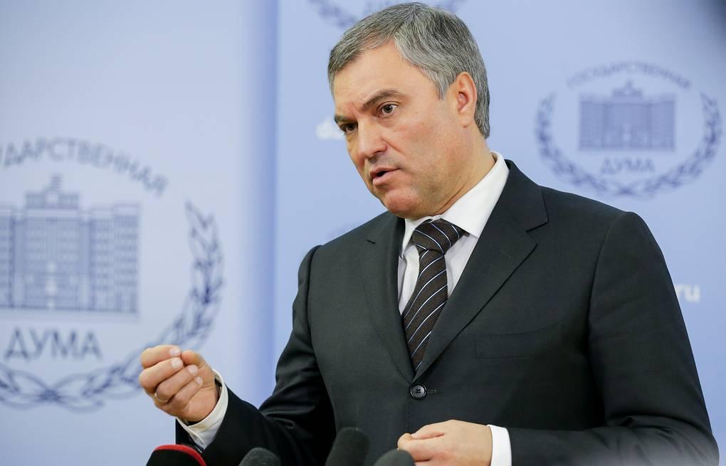 Вячеслав Володин возглавит совет благотворителей «Справедливой помощи Доктора Лизы»