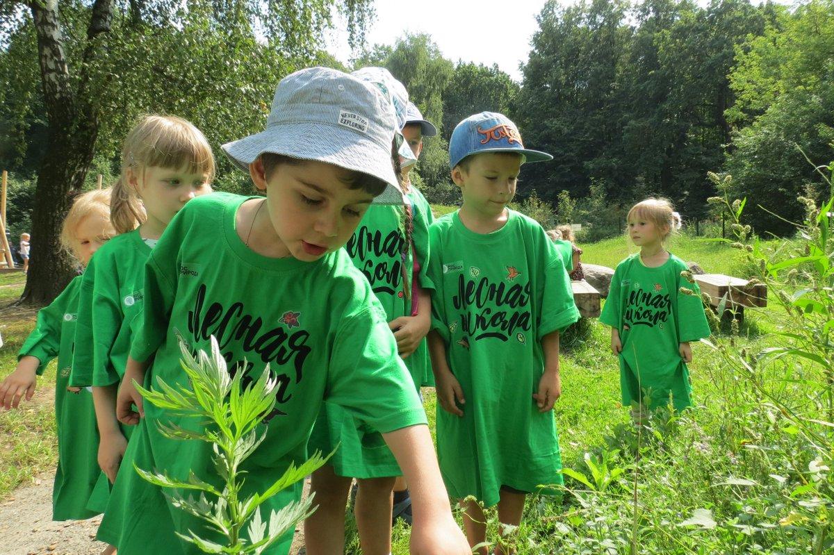 Для детей проведут занятия в «Лесной школе» в парках Москвы