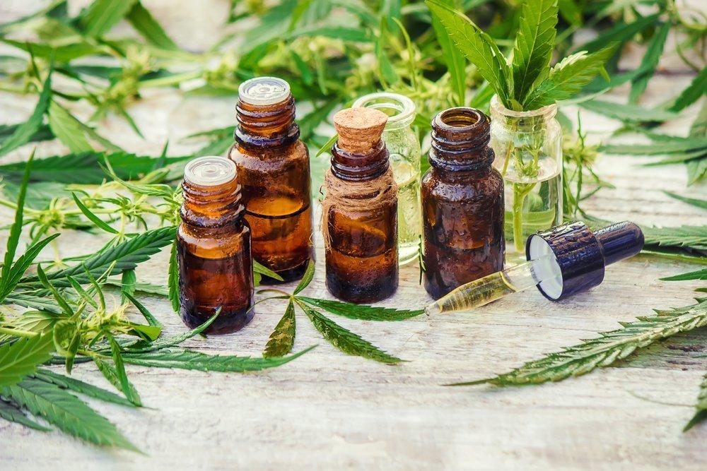 Культивирование наркосодержащих растений разрешили в медицинских целях
