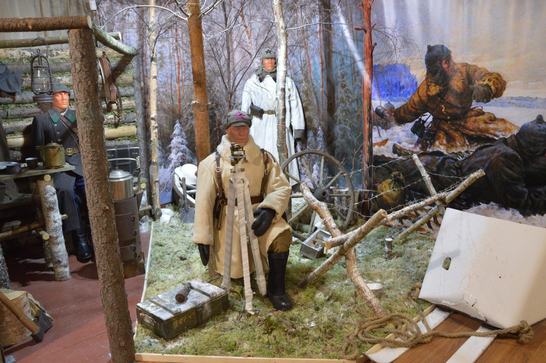 На День республики в Карелии провели историко-патриотические мероприятия