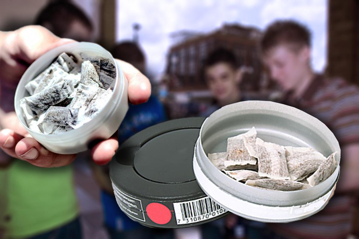 Единороссы не согласились на запрет снюса и смесей с никотином