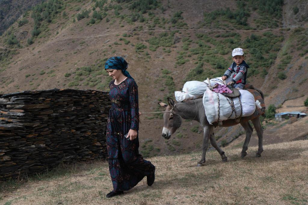 В Дагестане откроют горную учебную экоферму для детей-сирот