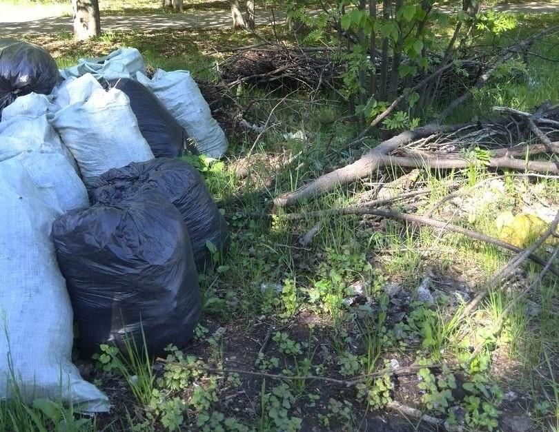 Санитарное состояние улиц в Курске оставляет желать лучшего