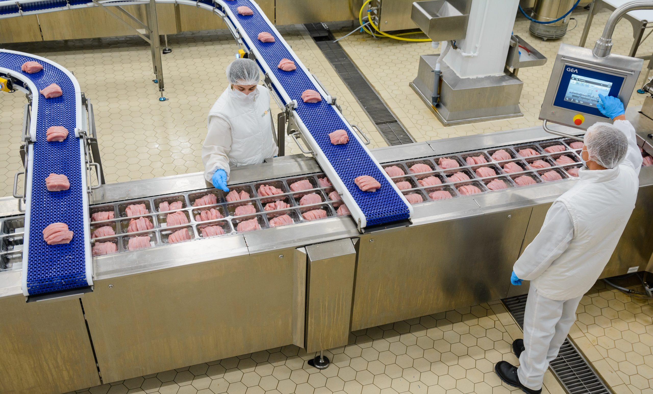 Почти половину всей индейки на российском рынке производят в Пензе