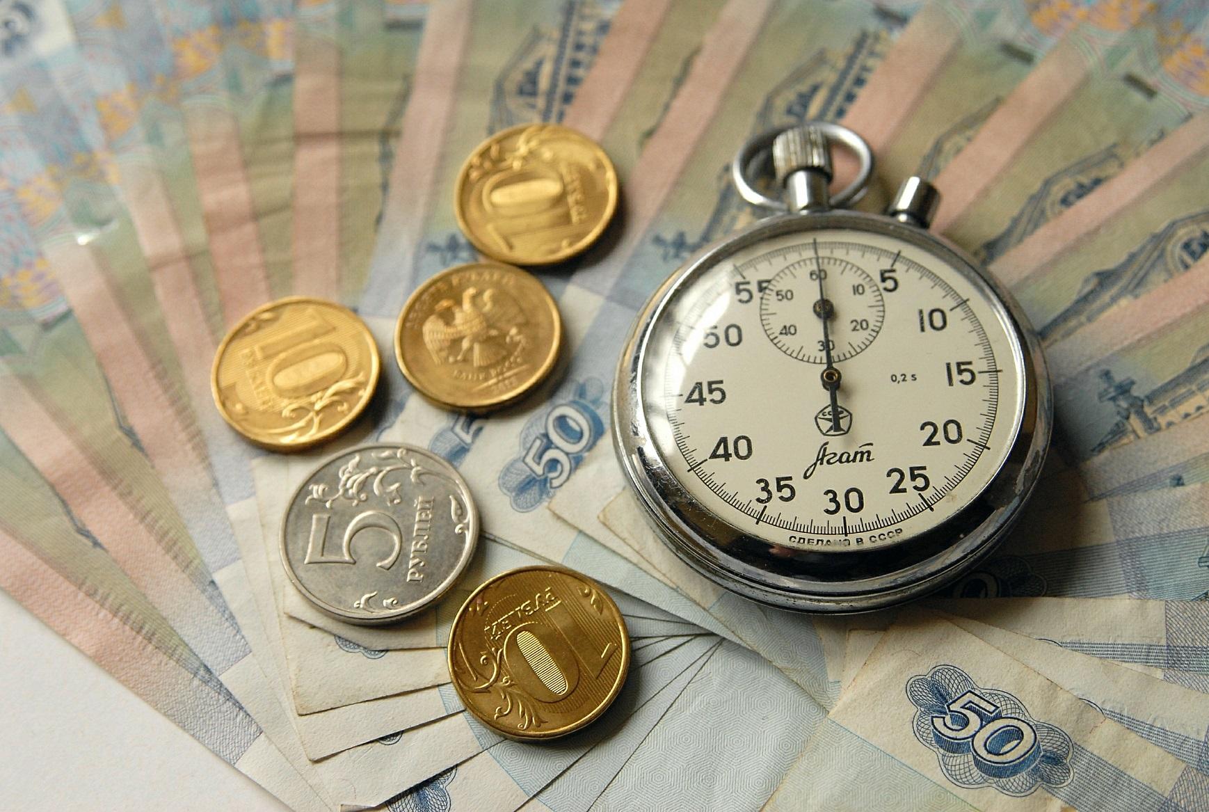 В Госдуме предложили ввести минимальный размер почасовой оплаты труда