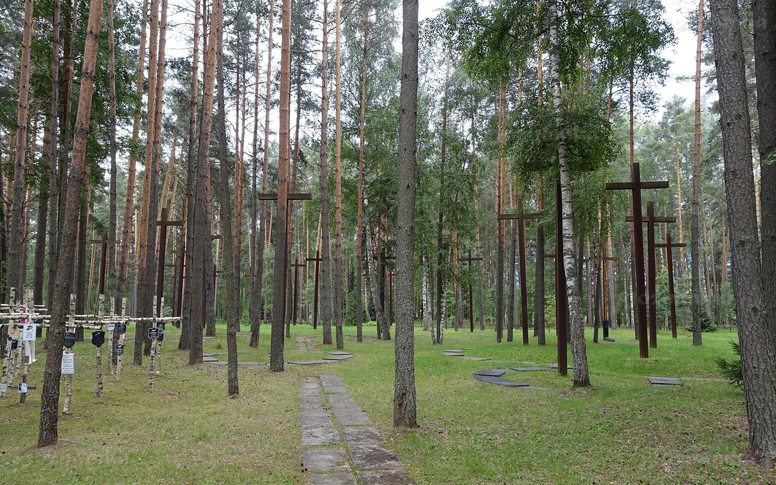 К восстановлению честного имени РФ призвали на конференции по проблемам сохранения исторической памяти