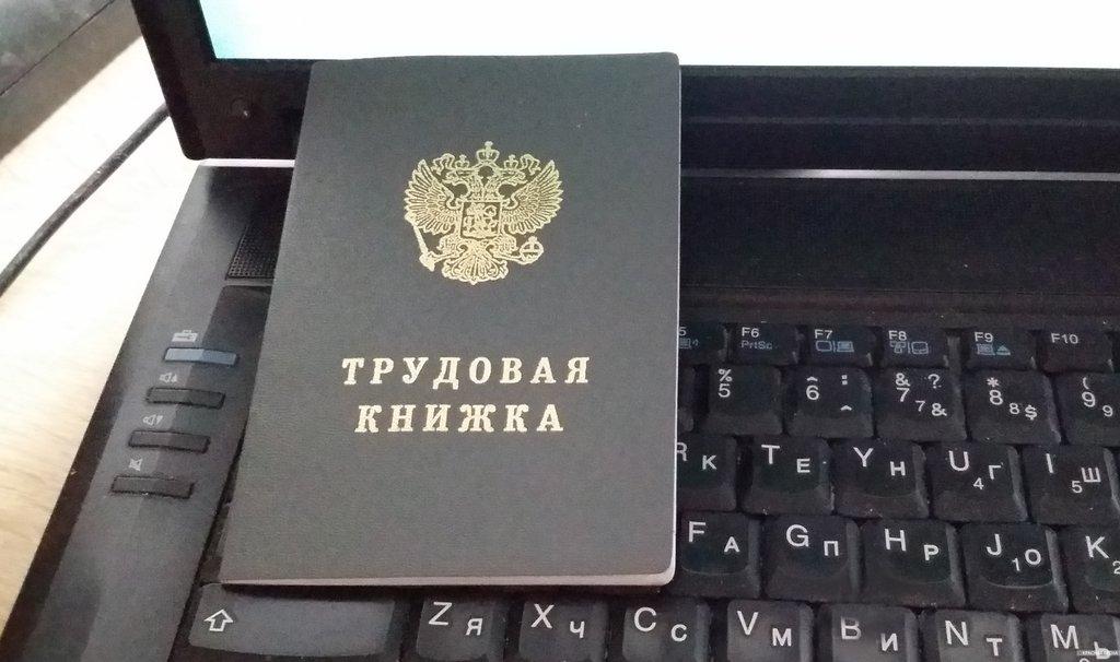 Правительство предложило расширить формат электронной трудовой книжки