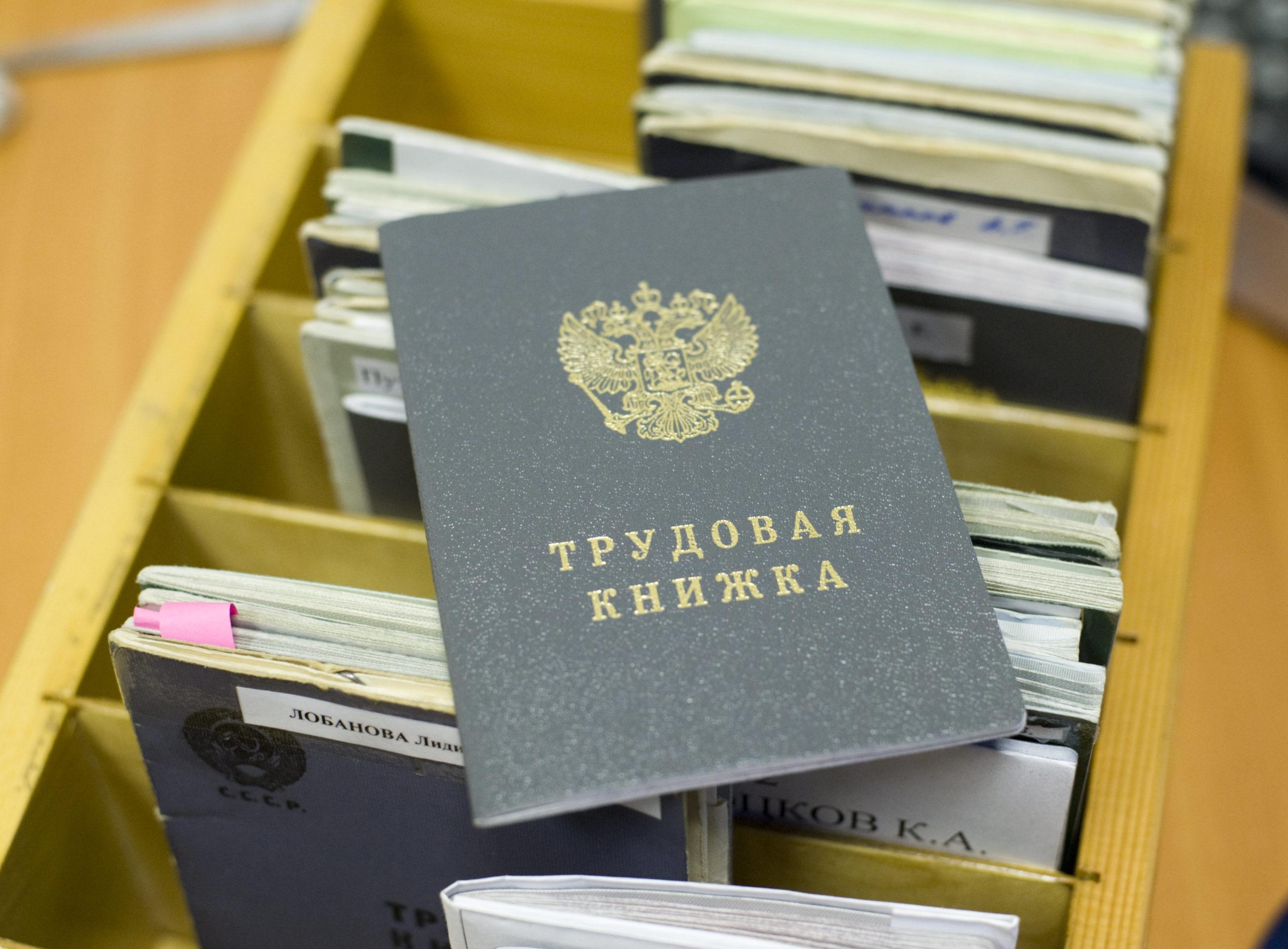 Более половины россиян предпочли бумажную трудовую книжку