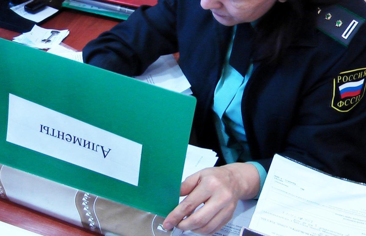 В Госдуму внесли законопроекты о выплате полных сумму должниками по алиментам