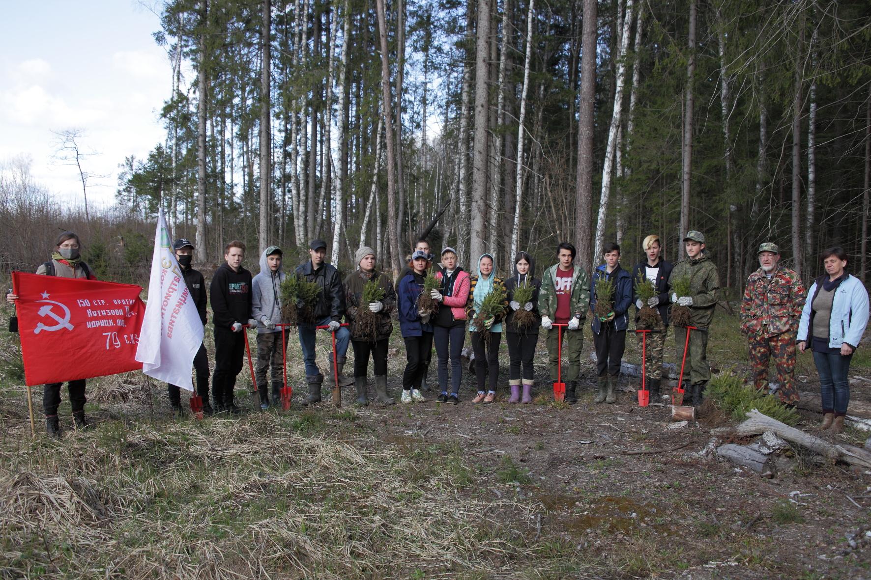 В рамках международной акции «Сад памяти» калужские школьники посадили лес